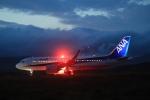 Tomochanさんが、函館空港で撮影した全日空 A320-271Nの航空フォト(飛行機 写真・画像)