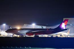 SGR RT 改さんが、成田国際空港で撮影したハワイアン航空 A330-243の航空フォト(飛行機 写真・画像)
