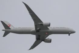 Hiro-hiroさんが、羽田空港で撮影した日本航空 787-9の航空フォト(飛行機 写真・画像)