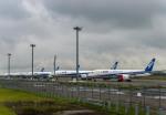 Cygnus00さんが、新千歳空港で撮影した全日空 787-8 Dreamlinerの航空フォト(飛行機 写真・画像)
