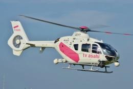 ブルーさんさんが、東京ヘリポートで撮影した東邦航空 EC135T2の航空フォト(飛行機 写真・画像)