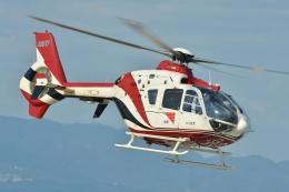 ブルーさんさんが、大阪ヘリポートで撮影した読売新聞 EC135P2の航空フォト(飛行機 写真・画像)