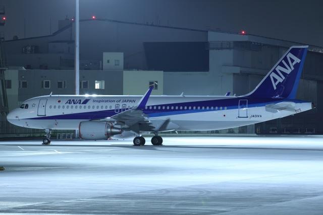 いんちゃんさんが、羽田空港で撮影した全日空 A320-214の航空フォト(飛行機 写真・画像)