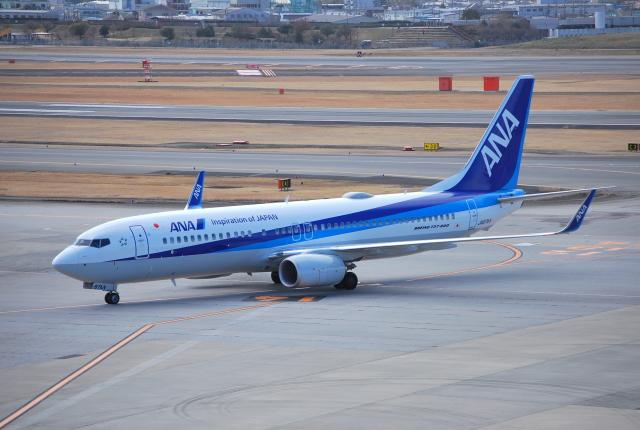 リュウキさんが、伊丹空港で撮影した全日空 737-8ALの航空フォト(飛行機 写真・画像)