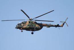 素快戦士さんが、BJTZで撮影した某国陸軍 第4陸航旅団  Mi-17 Mi-17-1Vの航空フォト(飛行機 写真・画像)