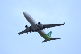 TAKAHIDEさんが、成田国際空港で撮影した春秋航空日本 737-8ALの航空フォト(飛行機 写真・画像)
