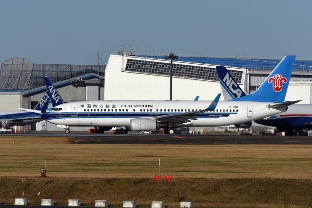 キットカットさんが、成田国際空港で撮影した中国南方航空 737-86Nの航空フォト(飛行機 写真・画像)
