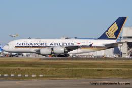 いおりさんが、成田国際空港で撮影したシンガポール航空 A380-841の航空フォト(飛行機 写真・画像)