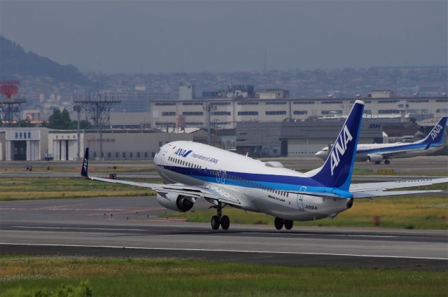 mild lifeさんが、伊丹空港で撮影した全日空 737-8ALの航空フォト(飛行機 写真・画像)