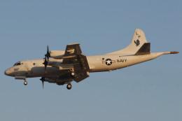 banshee02さんが、厚木飛行場で撮影したアメリカ海軍 P-3C AIPの航空フォト(飛行機 写真・画像)