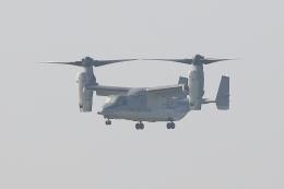 HADAさんが、木更津飛行場で撮影した陸上自衛隊 V-22の航空フォト(飛行機 写真・画像)