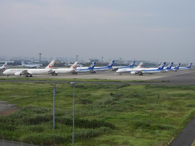 チャレンジャーさんが、羽田空港で撮影した日本航空 787-8 Dreamlinerの航空フォト(飛行機 写真・画像)