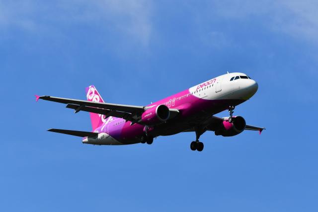beimax55さんが、成田国際空港で撮影したピーチ A320-214の航空フォト(飛行機 写真・画像)