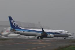Sharp Fukudaさんが、羽田空港で撮影した全日空 737-881の航空フォト(飛行機 写真・画像)