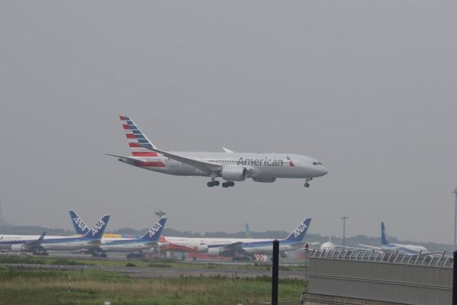 サリーちゃんのパパさんが、羽田空港で撮影したアメリカン航空 787-8 Dreamlinerの航空フォト(飛行機 写真・画像)