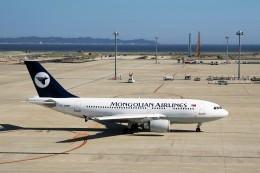 TADY BEARさんが、中部国際空港で撮影したMIATモンゴル航空 A310-304の航空フォト(飛行機 写真・画像)