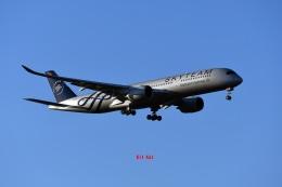 キットカットさんが、成田国際空港で撮影したベトナム航空 A350-941の航空フォト(飛行機 写真・画像)