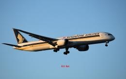 キットカットさんが、成田国際空港で撮影したシンガポール航空 787-10の航空フォト(飛行機 写真・画像)