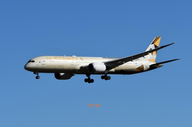 キットカットさんが、成田国際空港で撮影したエティハド航空 787-9の航空フォト(飛行機 写真・画像)