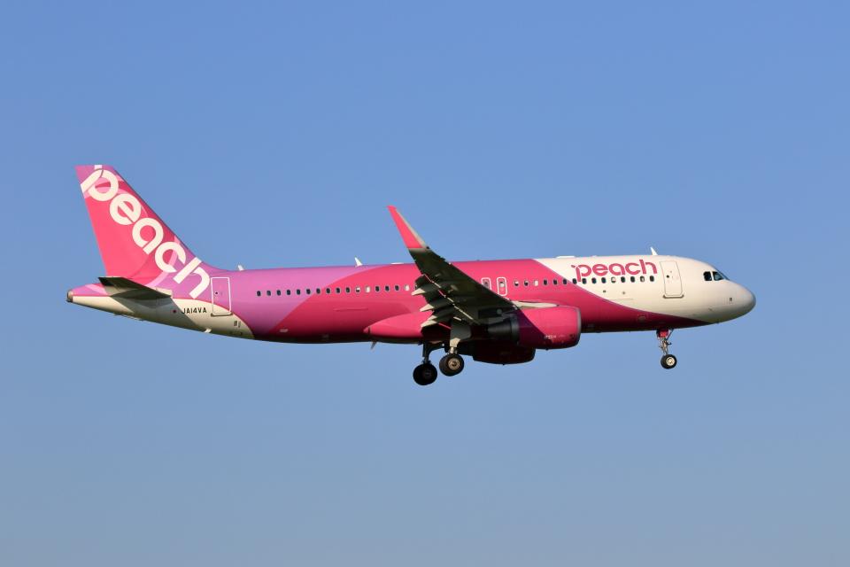walker2000さんのピーチ Airbus A320 (JA14VA) 航空フォト