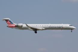zettaishinさんが、ダラス・フォートワース国際空港で撮影したアメリカン・イーグル CL-600-2D24 Regional Jet CRJ-900LRの航空フォト(飛行機 写真・画像)