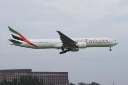 飛行機ゆうちゃんさんが、成田国際空港で撮影したエミレーツ航空 777-36N/ERの航空フォト(飛行機 写真・画像)