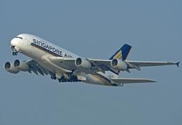 Souma2005さんが、香港国際空港で撮影したシンガポール航空 A380-841の航空フォト(飛行機 写真・画像)