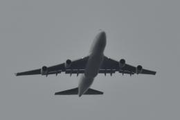 NFファンさんが、厚木飛行場で撮影したカリッタ エア 747-4B5(BCF)の航空フォト(飛行機 写真・画像)