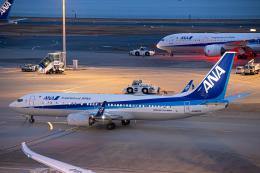 SGR RT 改さんが、羽田空港で撮影した全日空 737-8ALの航空フォト(飛行機 写真・画像)