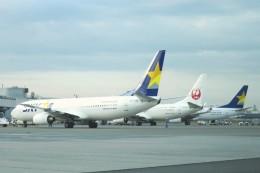 Hiro-hiroさんが、羽田空港で撮影したスカイマーク 737-8HXの航空フォト(飛行機 写真・画像)