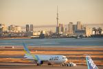SGR RT 改さんが、羽田空港で撮影したAIR DO 767-33A/ERの航空フォト(飛行機 写真・画像)