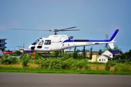 hidetsuguさんが、札幌飛行場で撮影したディーエイチシー AS350B3 Ecureuilの航空フォト(飛行機 写真・画像)