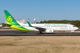 Ariesさんが、成田国際空港で撮影した春秋航空日本 737-8ALの航空フォト(飛行機 写真・画像)