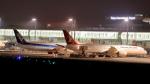 誘喜さんが、羽田空港で撮影したターキッシュ・エアラインズ 787-9の航空フォト(飛行機 写真・画像)