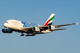 Ariesさんが、成田国際空港で撮影したエミレーツ航空 A380-861の航空フォト(飛行機 写真・画像)