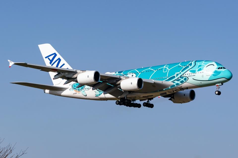 Ariesさんの全日空 Airbus A380 (JA382A) 航空フォト
