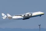 Ariesさんが、中部国際空港で撮影したアントノフ・エアラインズ An-225 Mriyaの航空フォト(飛行機 写真・画像)