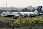K.Sさんが、成田国際空港で撮影したオーロラ A319-111の航空フォト(飛行機 写真・画像)