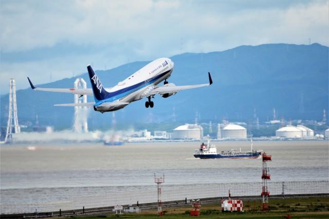MSN/PFさんが、中部国際空港で撮影した全日空 737-881の航空フォト(飛行機 写真・画像)