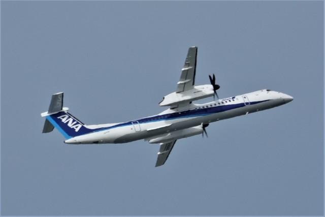 jutenLCFさんが、中部国際空港で撮影したANAウイングス DHC-8-402Q Dash 8の航空フォト(飛行機 写真・画像)