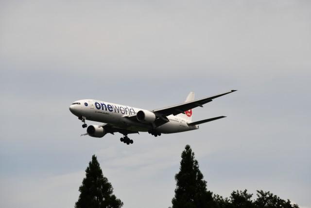 おかめさんが、成田国際空港で撮影した日本航空 777-246の航空フォト(飛行機 写真・画像)