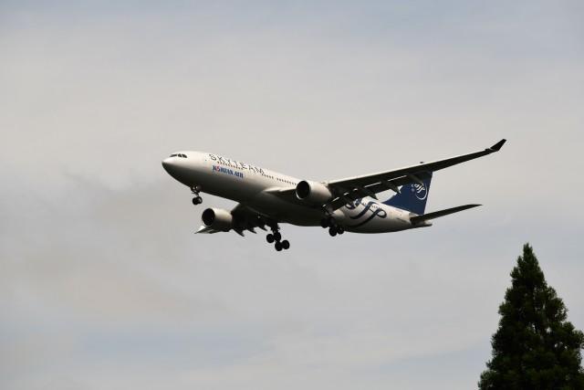おかめさんが、成田国際空港で撮影した大韓航空 A330-223の航空フォト(飛行機 写真・画像)