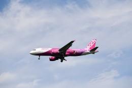 おかめさんが、成田国際空港で撮影したピーチ A320-214の航空フォト(飛行機 写真・画像)
