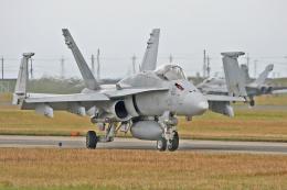 スカルショットさんが、岩国空港で撮影したアメリカ海軍 F/A-18C Hornetの航空フォト(飛行機 写真・画像)