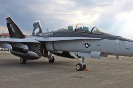 スカルショットさんが、岩国空港で撮影したアメリカ海兵隊 F/A-18D Hornetの航空フォト(飛行機 写真・画像)