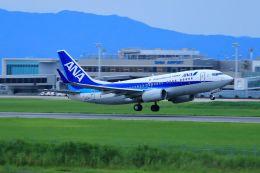 門ミフさんが、佐賀空港で撮影した全日空 737-781の航空フォト(飛行機 写真・画像)