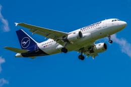 航空フォト:D-AILD ルフトハンザドイツ航空 A319