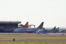 TAKAHIDEさんが、ダニエル・K・イノウエ国際空港で撮影したトランスエア 737-2T4C/Advの航空フォト(飛行機 写真・画像)