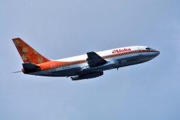 パール大山さんが、ダニエル・K・イノウエ国際空港で撮影したアロハ航空 737-297の航空フォト(飛行機 写真・画像)