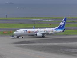 蒲田っ子さんが、羽田空港で撮影した全日空 737-881の航空フォト(飛行機 写真・画像)
